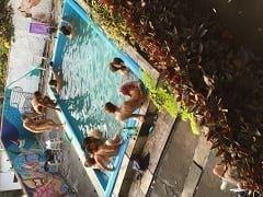 Vazou na Web Vídeo de Festinha Bissexual na Casa Coletiva em Santa Tereza – RJ Regada de Putaria e Muito Sexo na Piscina – Caiu na Net