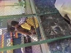 Flanelinha Foi Flagrado Dando Uma Trepada Com Uma Putinha no Meio da Rua em Lugar Público Sem Pudor Nenhum – Caiu na Net