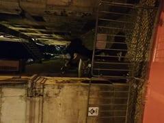 Em um Beco Pelas Ruas de Porto – Portugal um Negão Foi Flagrado Fodendo Uma Loira Gostosa ao ar Livre – Caiu na Net